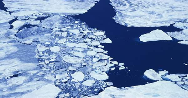 The Arctic Has Become Riddled With Synthetic Clothing Fibres