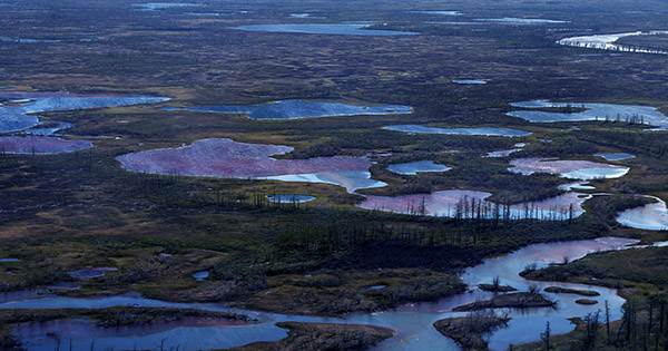The New Satellite Images Show Arctic River Turned Red from Diesel Spill