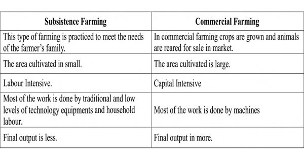 Difference between Subsistence and Commercial Farming