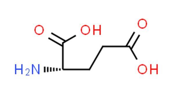 Glutamic acid – a non-essential amino acid