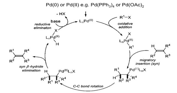 Heck reaction – a palladium-catalyzed cross-coupling reaction