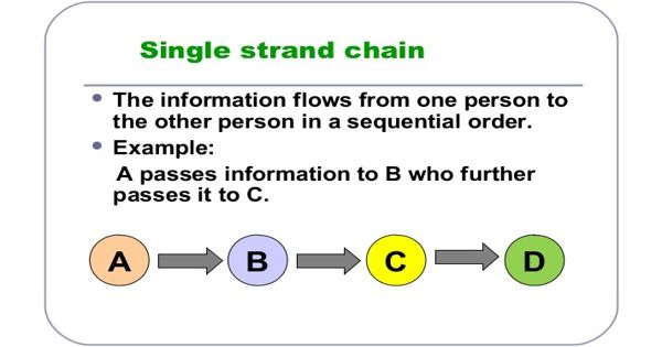 Single Strand Network in Business Communication
