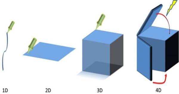 4-dimensional printing