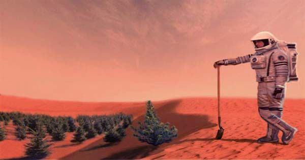 Algae Could Be Grown On Mars Sustain Human Life