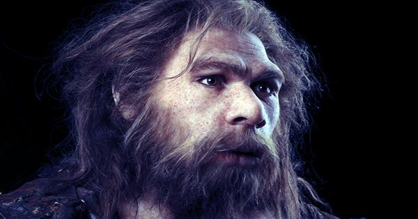 """Ancient Teeth of Possible Neanderthal-Human """"Hybrid Population"""" Discovered In Jersey"""