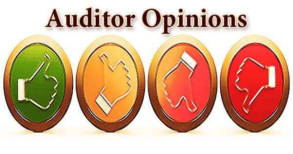 Auditor Opinions