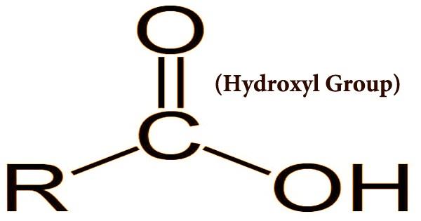Hydroxyl Group