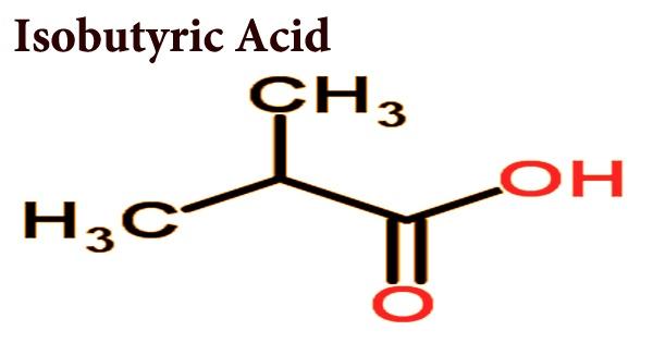 Isobutyric Acid