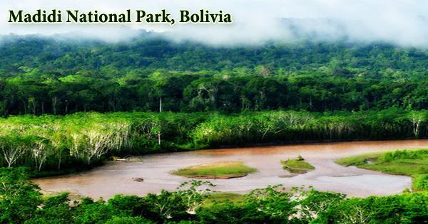 Madidi National Park, Bolivia