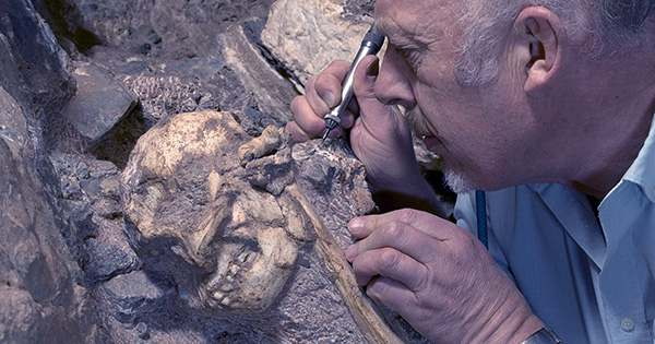 Opposable Thumbs First Emerged In Humans 2 Million Years Ago