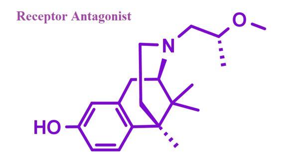 Receptor Antagonist – a biological repressor molecule