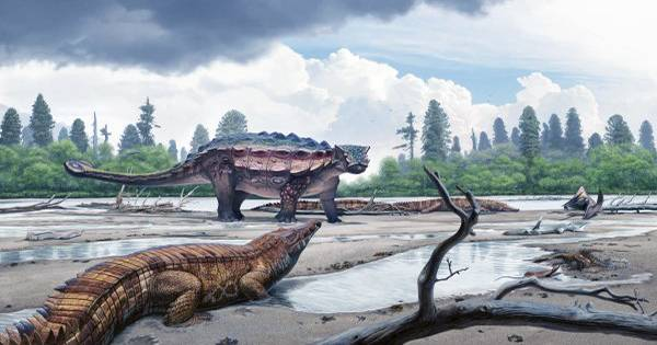 Armored Dinosaurs May Have Dug Hollows To Protect Themselves