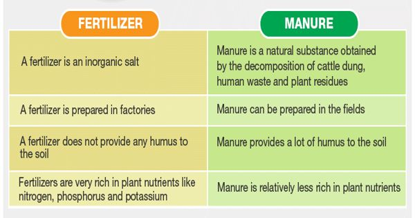 Difference between Manure and Fertilizer