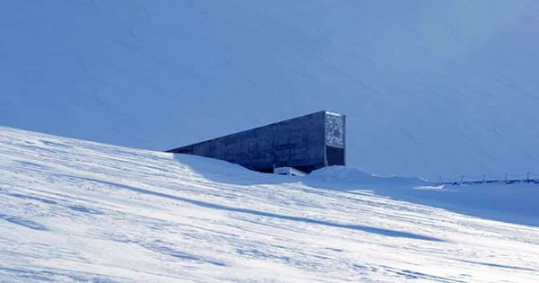 """Scientists Want To Build A """"Doomsday Vault"""" Of Earth's Species On the Moon, Just In Case"""