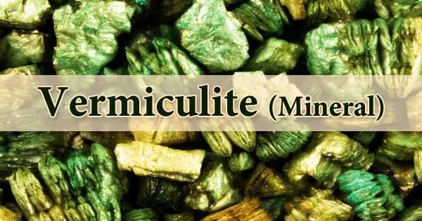 Vermiculite (Mineral)