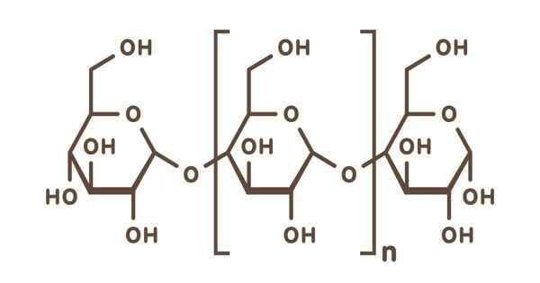 Polysaccharide – a complex carbohydrate