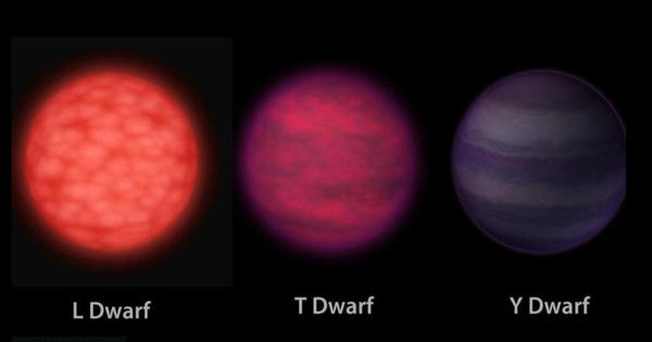 Astronomers reported the three fastest-spinning brown dwarfs ever found