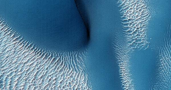 Blue Dunes on the Red Planet Makes For a Spectacular Image