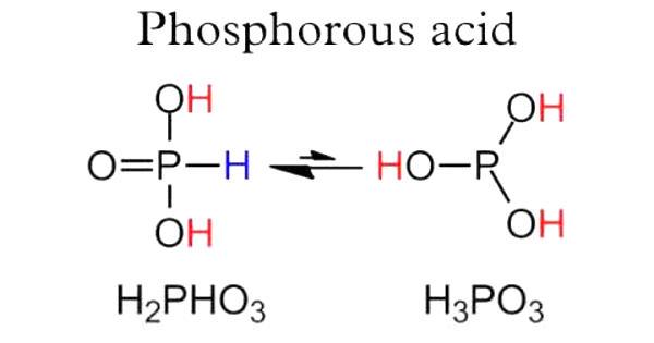 Phosphorous Acid – a crystalline solid