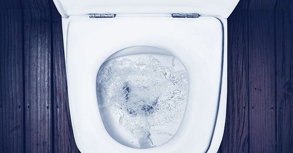 Study Reveals Why You Shouldn't Hang Around a Public Toilet after Flushing