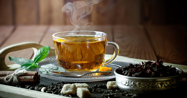 Study shows regular tea drinkers have better-organized brain regions