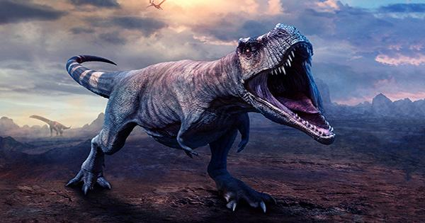 The Total Number of T-Rex That Ever Walked the Earth Is 2.5 Billion