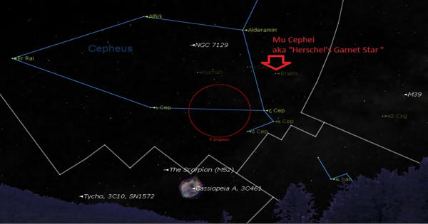 Mu Cephei – a red hypergiant star in the Cepheus constellation