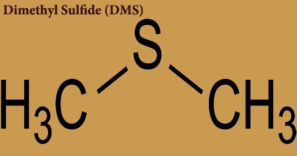 Dimethyl sulfide (DMS)