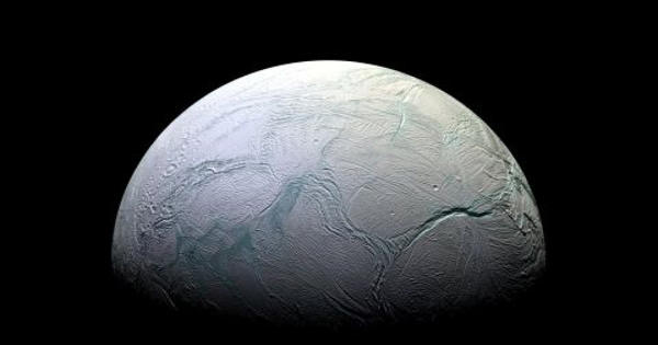 New Research Predicted Signs of Life on Saturn's Moon Enceladus