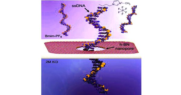 Researchers Develop a Nanopore Sequencing Platform in DNA Sequencing Technology