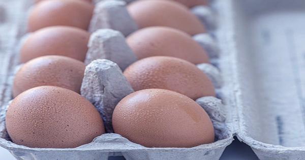 TikTokers go Wild for Massive Chicken Egg Found to Contain a Second Egg