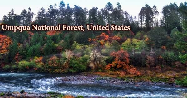 Umpqua National Forest, United States