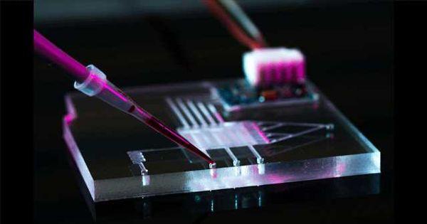 Microfluidics – an Indispensable Tool for Quantitative Analyses