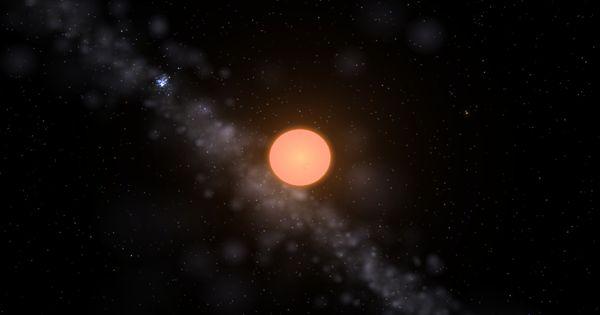 Chi Cygni – a Mira variable star located in the Cygnus constellation