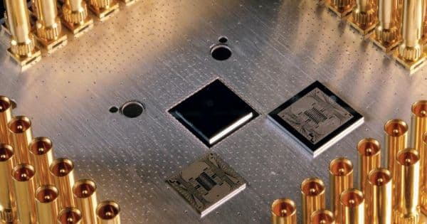 Errors are Correlated across an entire Superconducting Quantum Computing Chip