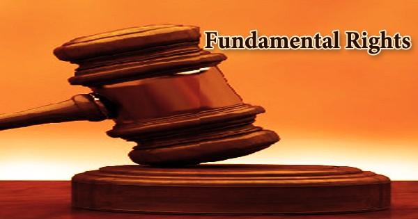 Fundamental Rights (Paragraph)