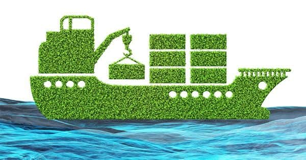 Researchers Investigating the Potential Use of Marine Biofuels