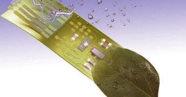 Researchers create an Electronic Microsystem that can Intelligently Respond