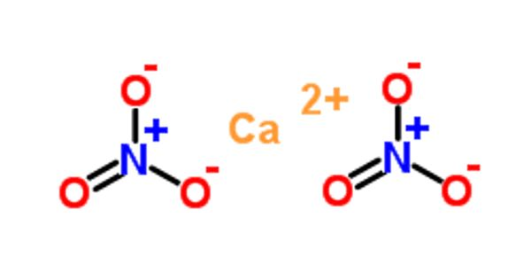 Calcium Nitrate – an Inorganic Compound