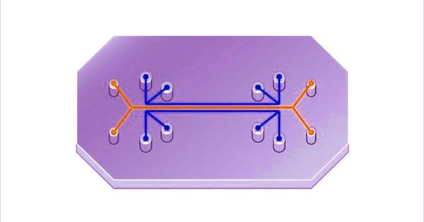 Organ-on-a-Chip – a Multi-channel 3-D Microfluidic Cell Culture Chip