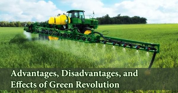 Advantages, Disadvantages, and Effects of Green Revolution