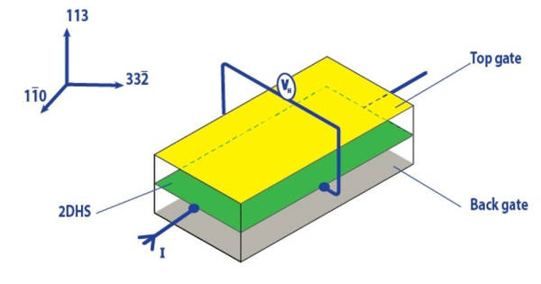 Detection of a Topological Magnetic Monopole Fingerprint