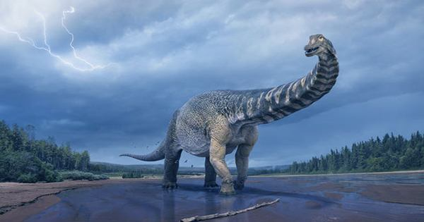 Early Dinosaur didn't Breathe Like Birds, or Us, Study Finds