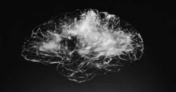 A Defective Gene Causes Brain Development to Slow Down