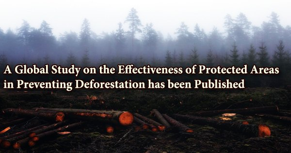 A Global Study on the Effectiveness of Protected Areas in Preventing Deforestation has been Published