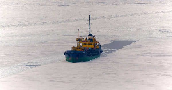 Arctic Shipping that isn't Sustainable Risks Worsening the Environment in the Arctic