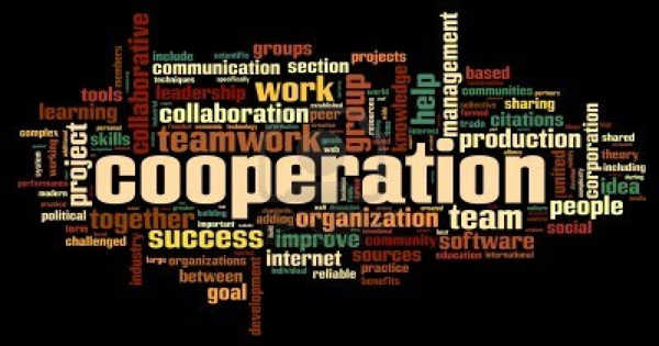 Different Kinds of Cooperative Strategies among Humans Develop