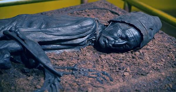 Guts Reveal the Last Meal of Incredibly Preserved Bog Body from 2,400 Years Ago