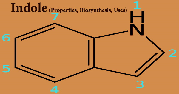 Indole (Properties, Biosynthesis, Uses)