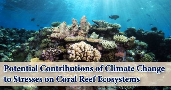 Potential Contributions of Climate Change to Stresses on Coral Reef Ecosystems